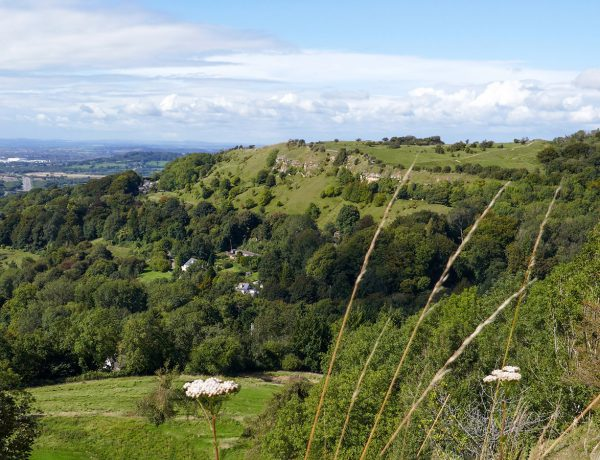 About the Cotswolds – views from Birdlip